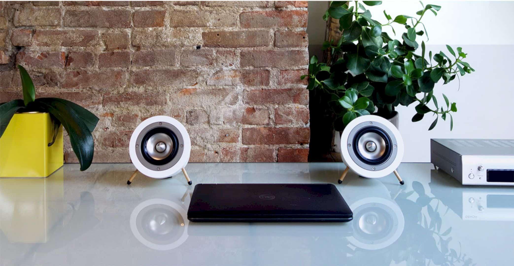 Degas Audio D1 Speaker 4