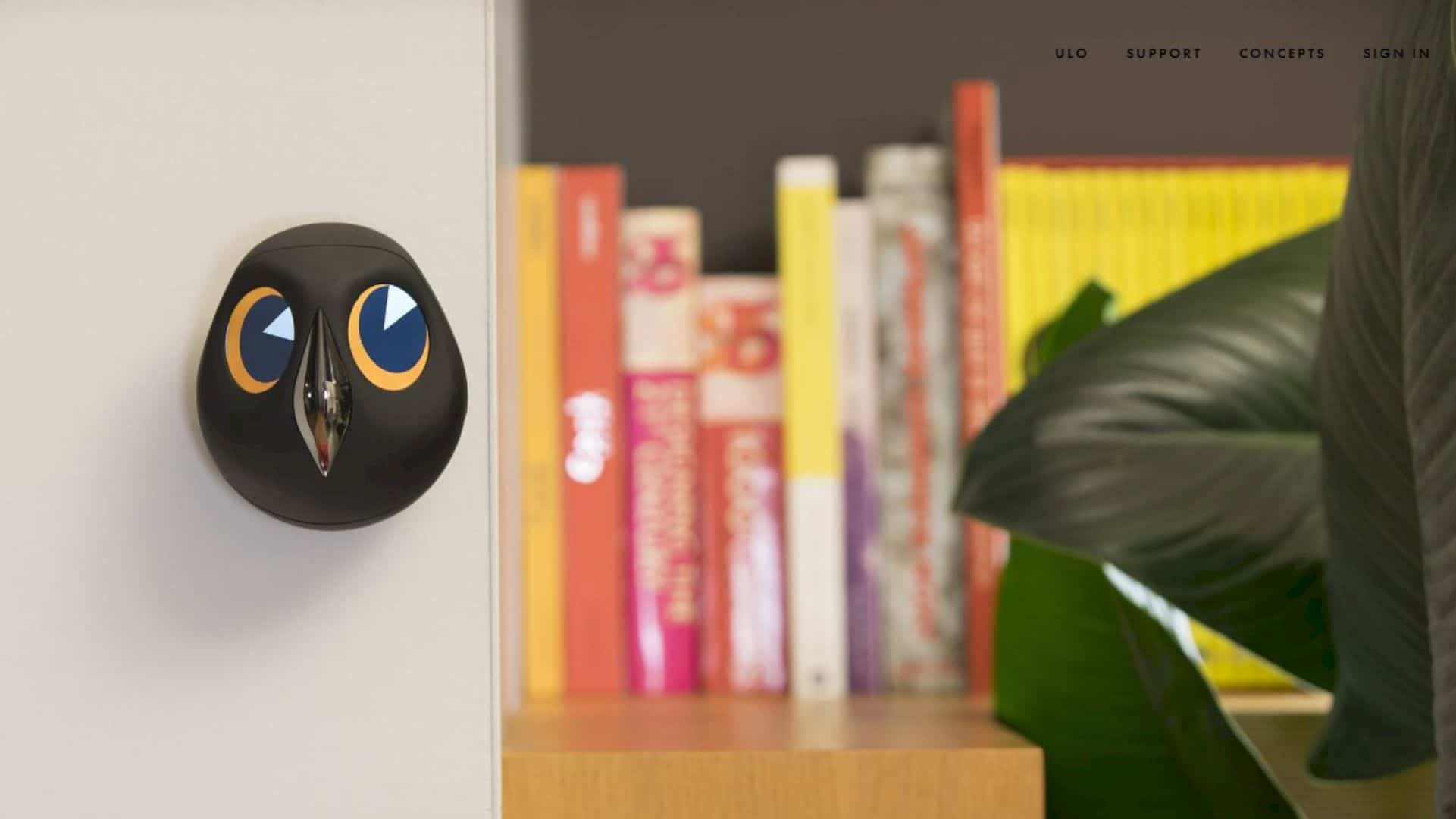 Ulo: An Interactive and Cute Home Monitoring Owl