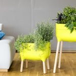 Urbalive Indoor Planter: An Excellent Tool for Your Interiors and Roofed Terraces