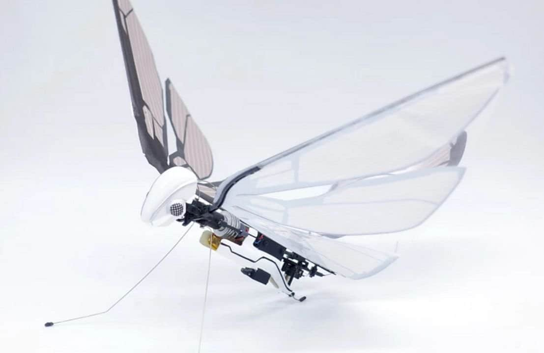 Metafly 2
