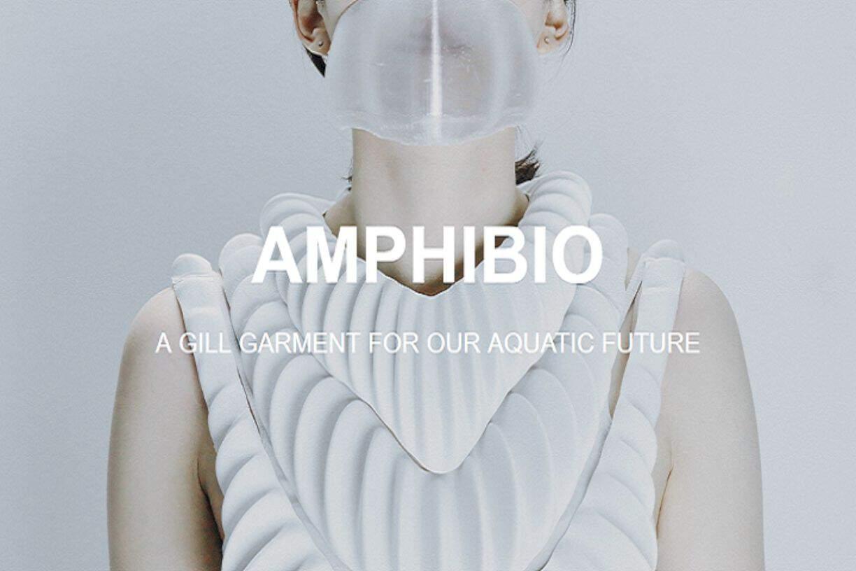 Amphibio 6