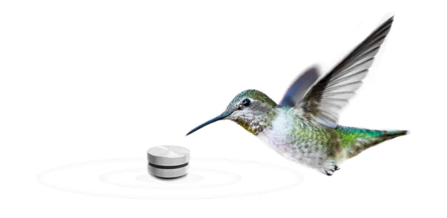 Humbird Speaker 5