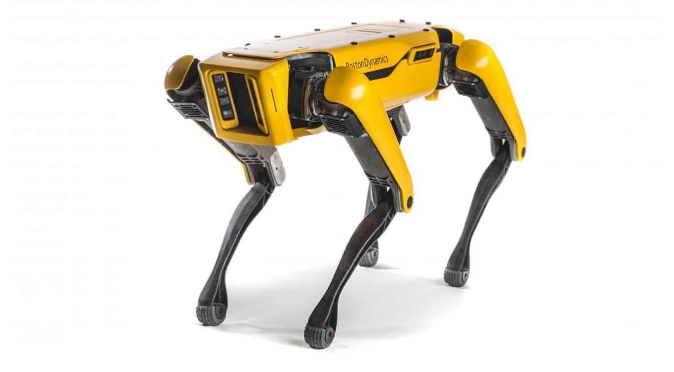 Boston Dynamics Spot 11