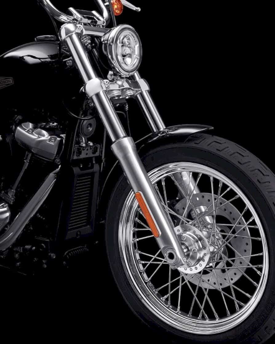2020 Harley Davidson Softail Standard 2