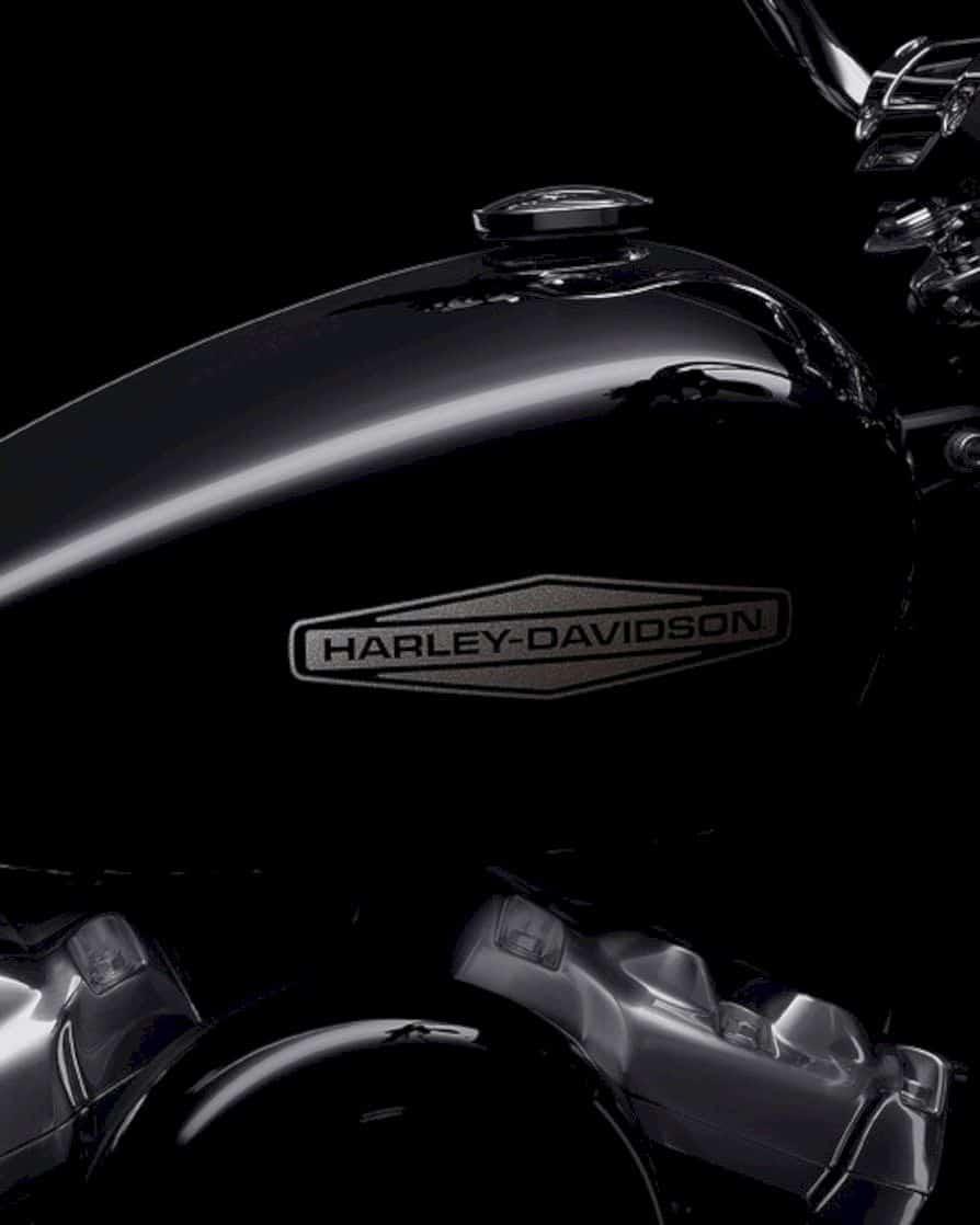 2020 Harley Davidson Softail Standard 3