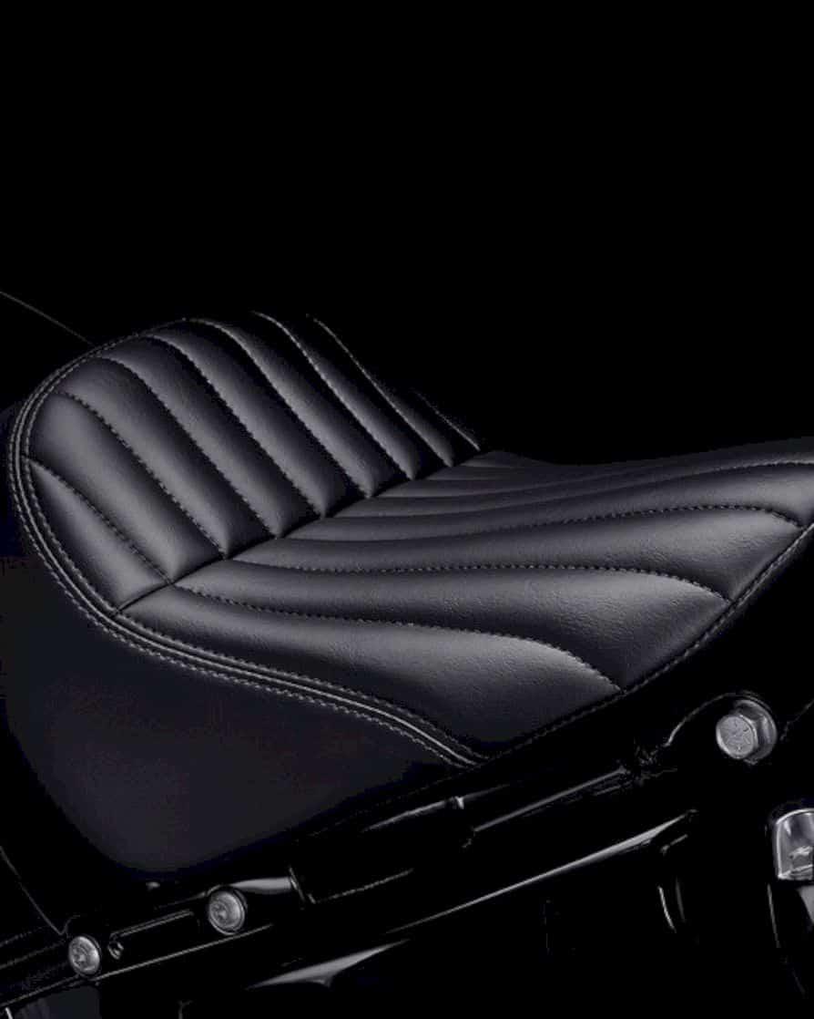 2020 Harley Davidson Softail Standard 5