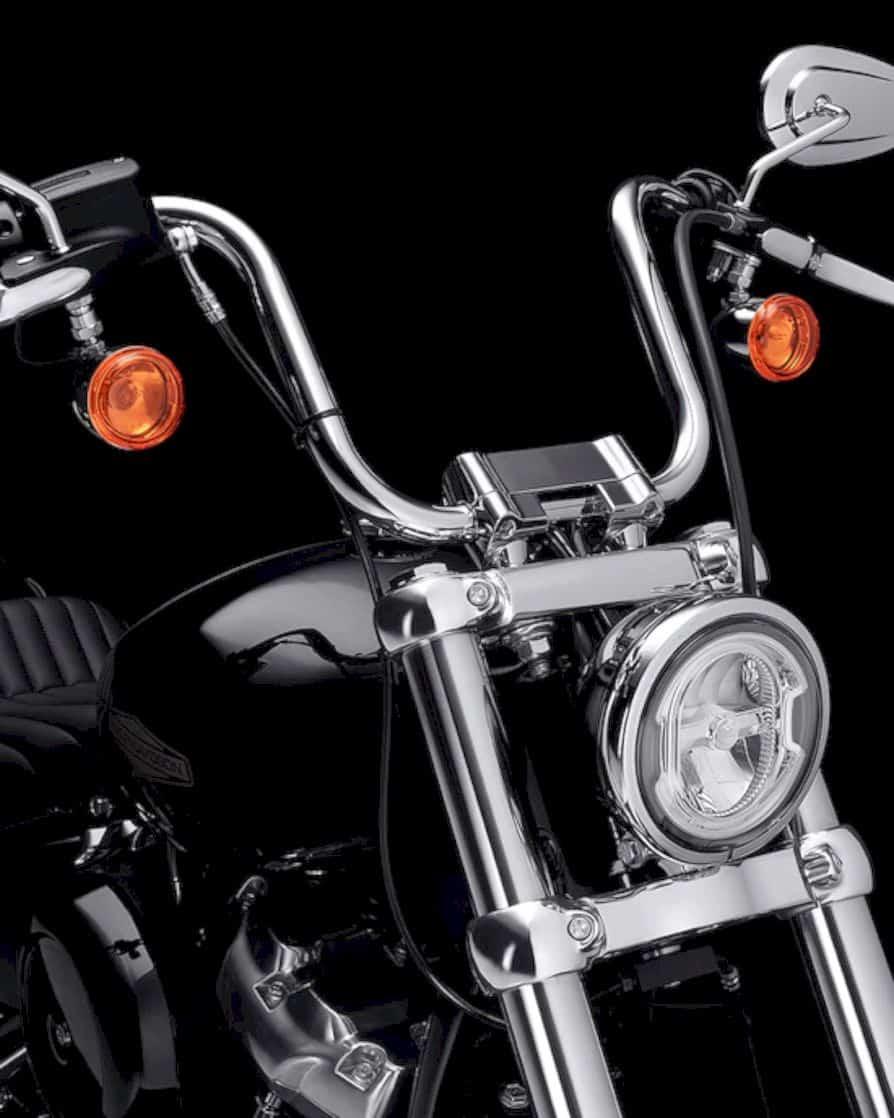 2020 Harley Davidson Softail Standard 6