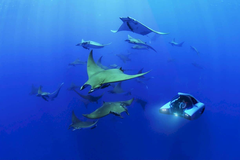 U Boat Worx Nemo 5