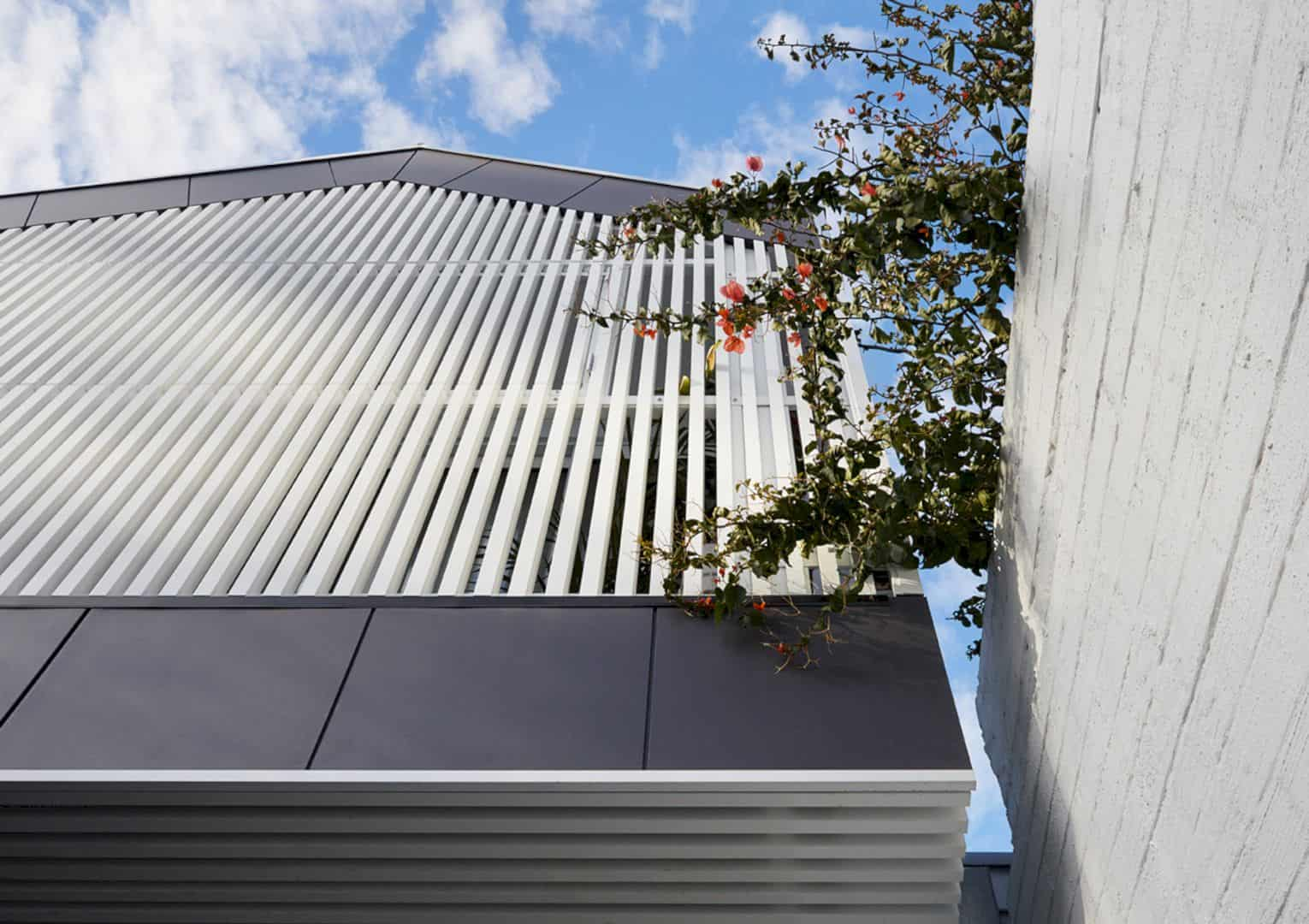 St Kilda Cottage House By Jost Architects 25