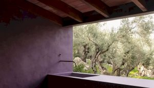 The Olive Houses By Mar Plus Ask 2