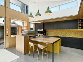 Laneway House Coburg By Zen Architects 3