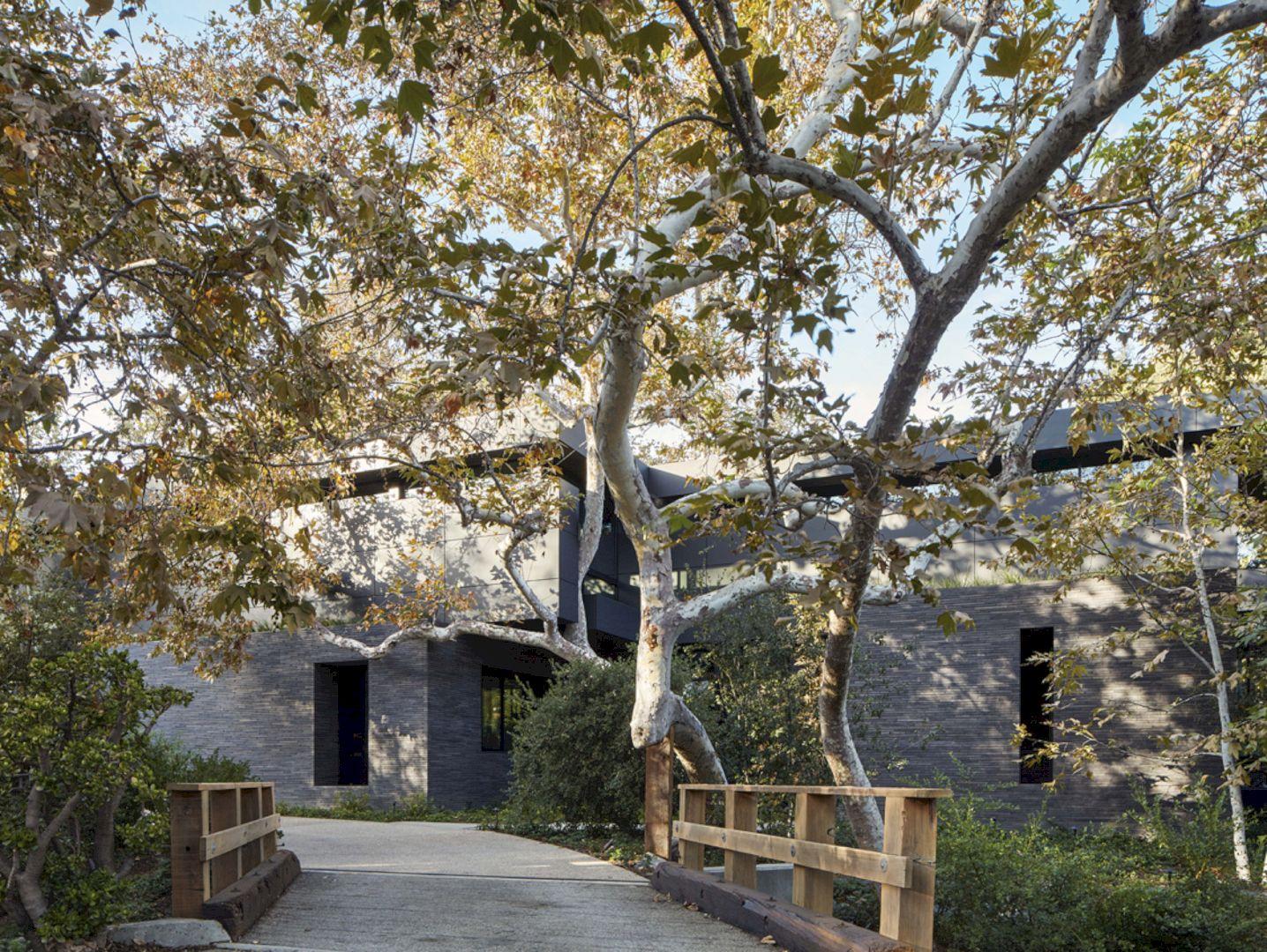 Mandeville Canyon By Marmol Radziner Architecture 16